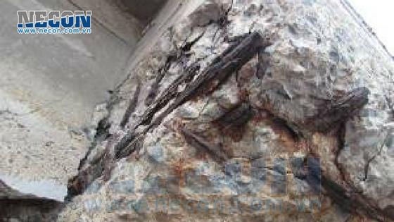 Dầm chịu lực, sàn công nghệ bị nứt vỡ- cảng Vedan Đồng Nai 3